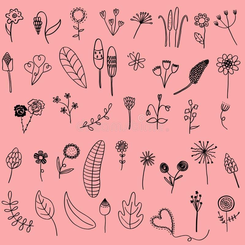 Wektorowy ilustracyjny ustawiający ręka rysujący kwiatu liścia doodle jako grap ilustracja wektor
