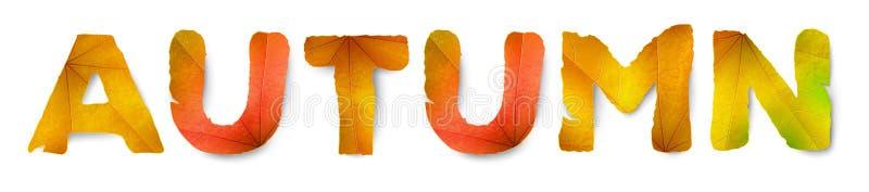 Wektorowy jesieni słowo, robić od jesień liści ilustracja wektor