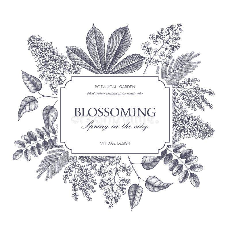 Wektorowy karciany projekt z ręką rysującą kwitnący drzewo Kwiecisty ślubny zaproszenie szablon ilustracji