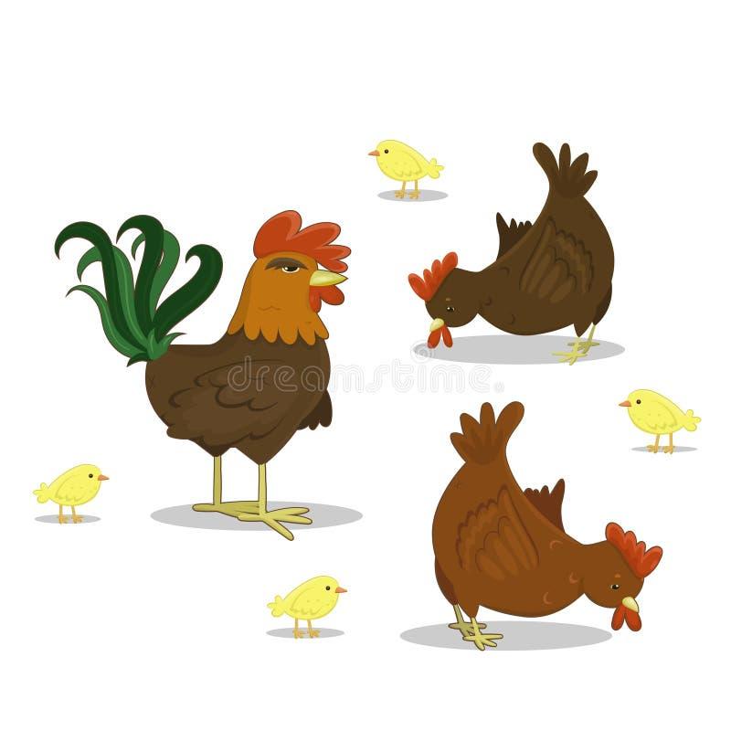 Wektorowy kogut, karmazynka, kurczaki na bia?ym tle Rolny drobiowy kurczak royalty ilustracja