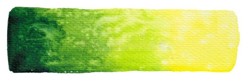 Wektorowy kolor żółty i zieleń malujemy teksturę odizolowywającą na bielu - akwarela horyzontalny sztandar dla Twój projekta ilustracji