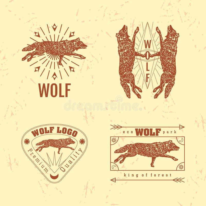 Wektorowy kolorowy logo ustawiający z lasowym wilkiem royalty ilustracja