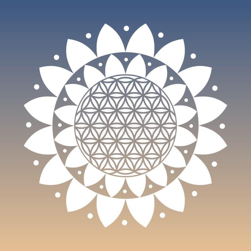Wektorowy kwiat życie symbol i Lotosowy kwiat na Naturalnym tle ilustracja wektor