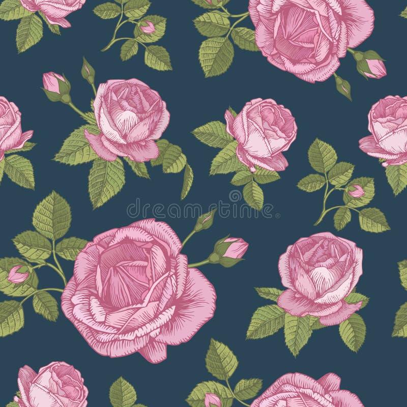 Wektorowy kwiecisty bezszwowy wzór z bukietami różowe róże royalty ilustracja
