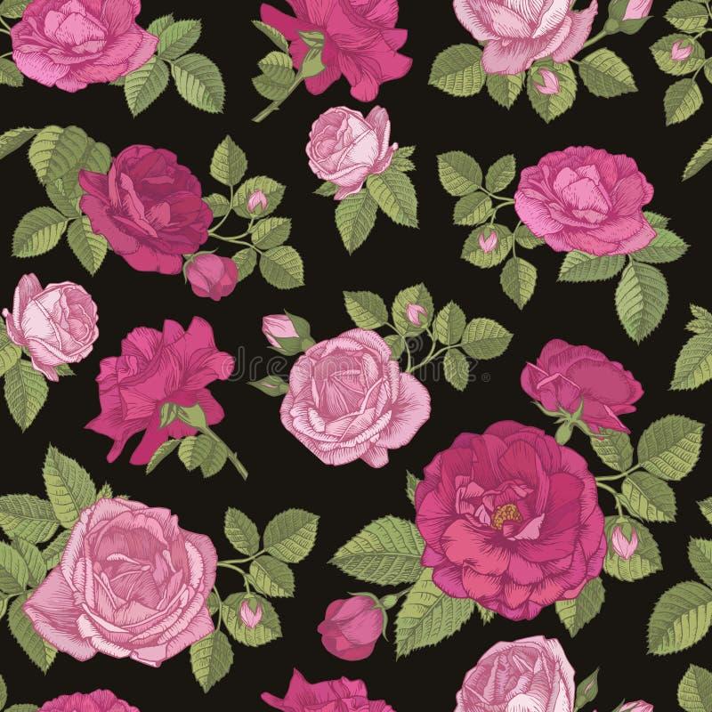 Wektorowy kwiecisty bezszwowy wzór z ręki rysować czerwieni i menchii różami na czarnym tle royalty ilustracja