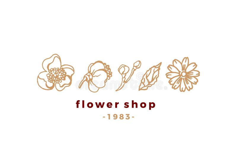 Wektorowy kwiecisty piękno logo dla sklepu Natura emblemat ilustracja wektor