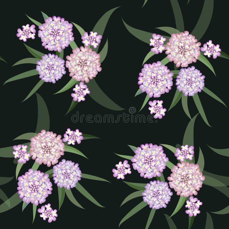 Wektorowy kwiecisty wzór grupa menchie kwitnie z liśćmi ilustracja wektor