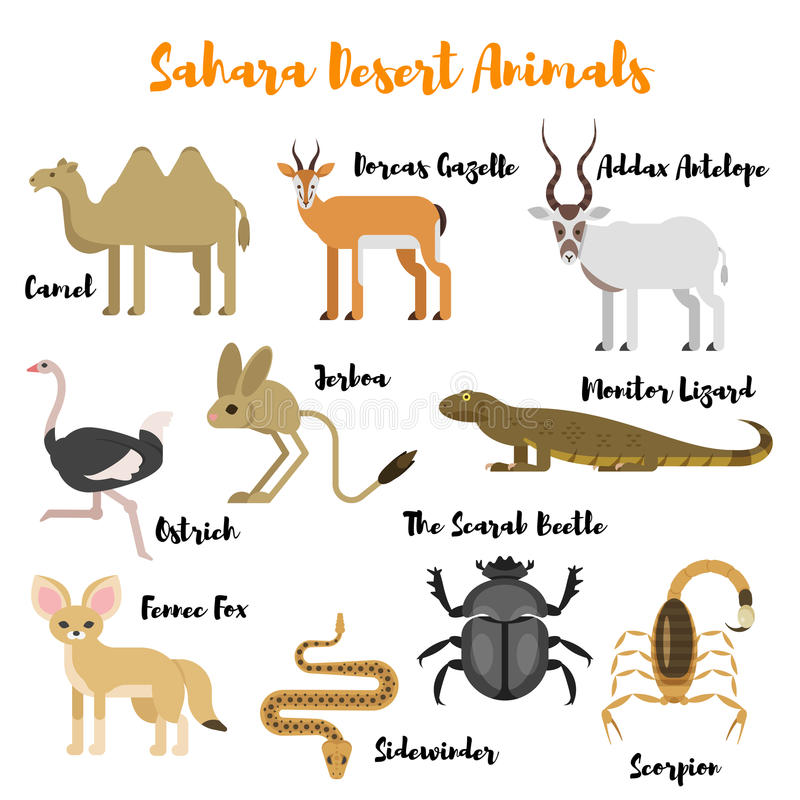 Wektorowy mieszkanie stylu set pustynni dzikie zwierzęta ilustracja wektor