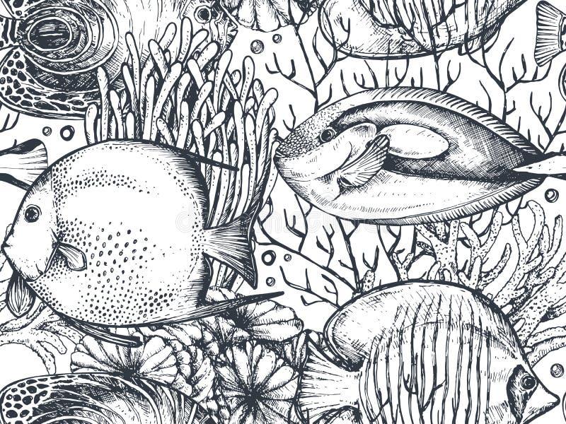 Wektorowy monochromatyczny bezszwowy morze wzór z tropikalnymi ryba, algi, korale royalty ilustracja