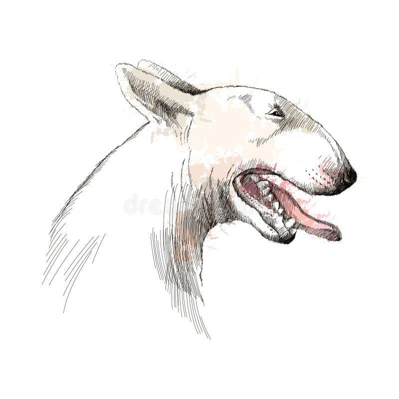 Wektorowy nakreślenie Bull terrier psiej głowy profil z otwartym usta na białym tle ilustracja wektor