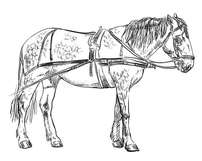 Wektorowy nicielnica koń ilustracja wektor