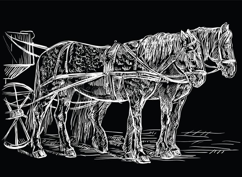 Wektorowy nicielnica koni czerń ilustracji