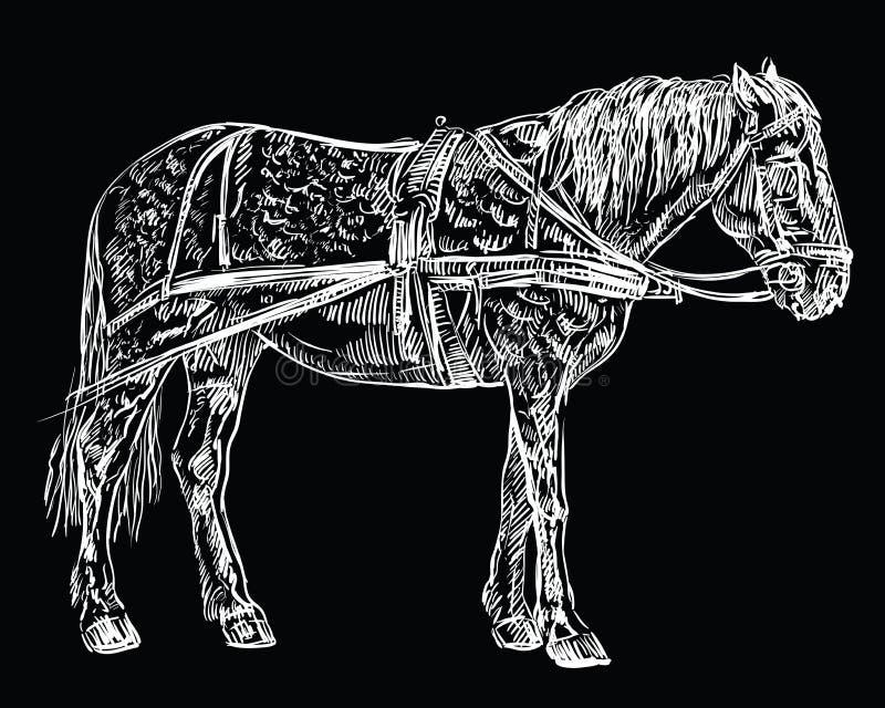 Wektorowy nicielnica konia czerń ilustracji
