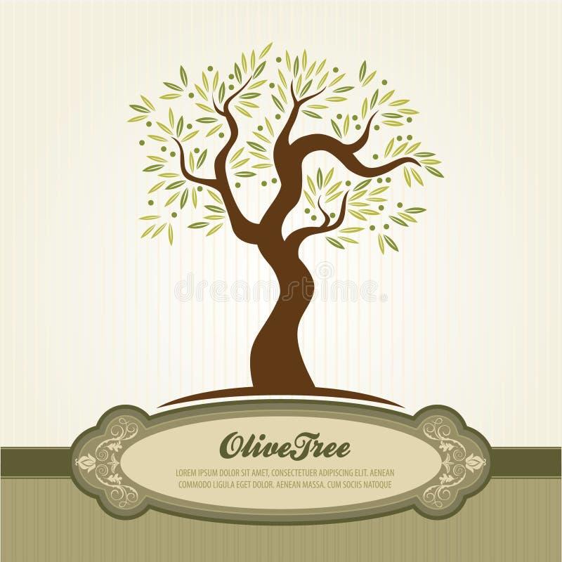 wektorowy oliwka rocznik ilustracja wektor