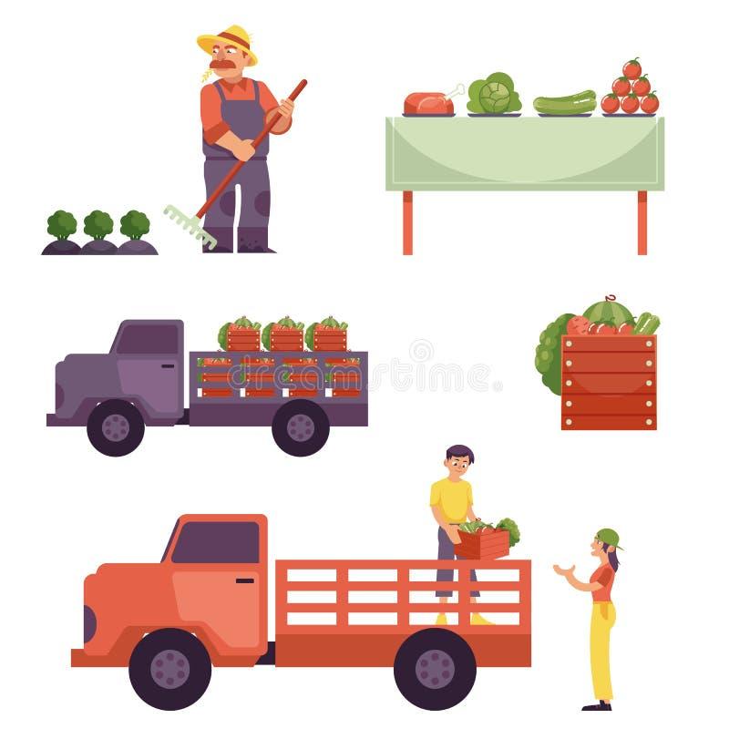 Wektorowy płaski średniorolny produkt dostawy procesu set ilustracji