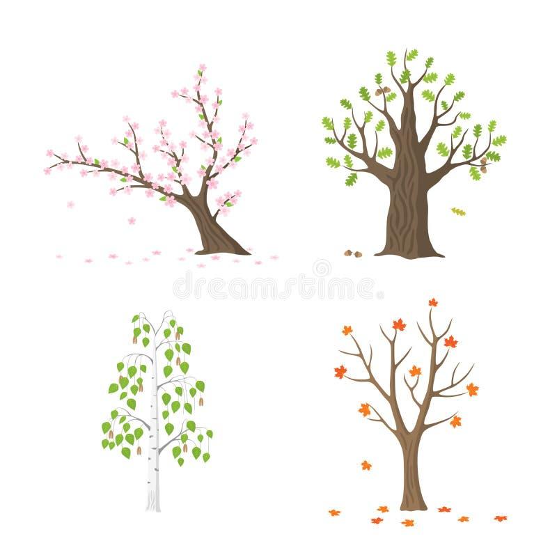 Wektorowy płaski drzewo ustawiający odizolowywającym ilustracja wektor
