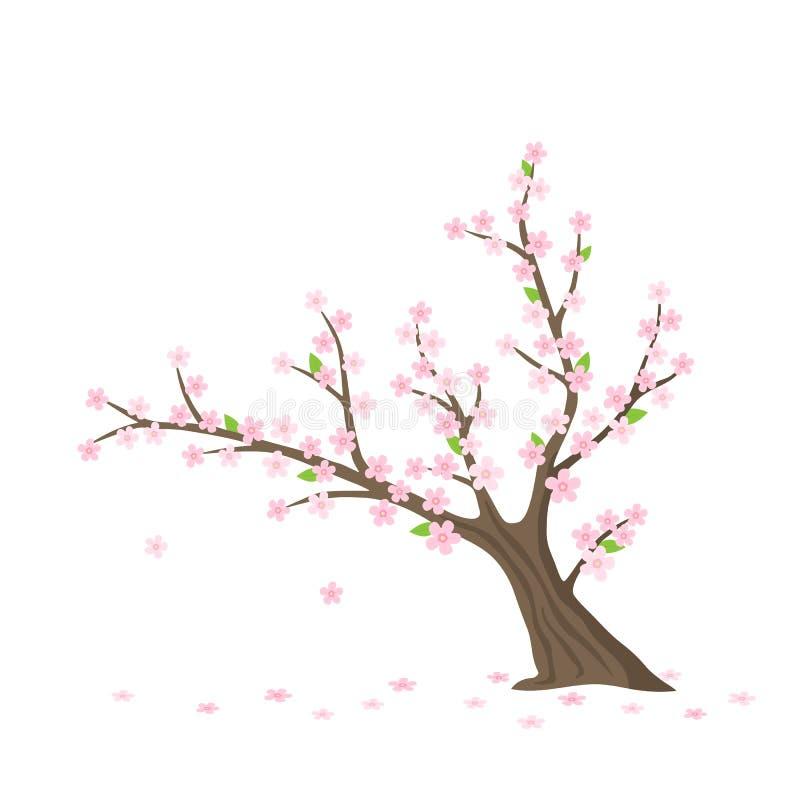 Wektorowy płaski Sakura drzewo ilustracji