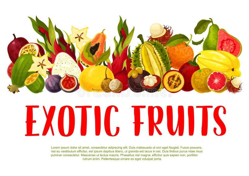 Wektorowy plakat dla tropikalnych egzotycznych owoc ilustracja wektor