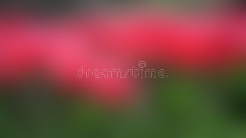 Wektorowy plamy tło od czerwonego kwiatu pola ilustracja wektor