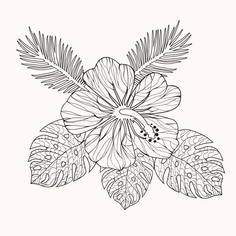 Wektorowy poślubnika kwiat, liście i ilustracji