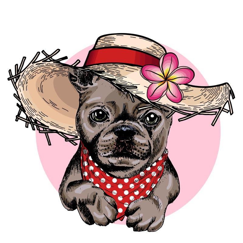 Wektorowy portret Francuskiego buldoga psi jest ubranym słomiany kapelusz, kwiat i polki kropki bandany, Lato mody ilustracja Ręk ilustracja wektor