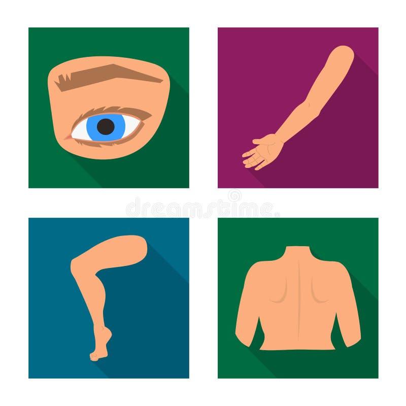 Wektorowy projekt cia?a i cz??ci symbol Kolekcja cia?a i anatomii akcyjna wektorowa ilustracja ilustracji
