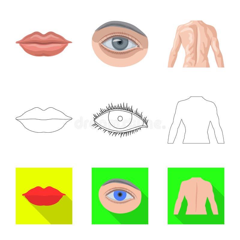 Wektorowy projekt istoty ludzkiej i części ikona Set istoty ludzkiej i kobiety akcyjny symbol dla sieci royalty ilustracja