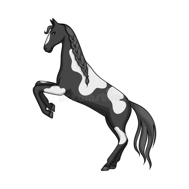 Wektorowy projekt koński i dziki logo Kolekcja konia i rancho akcyjna wektorowa ilustracja ilustracji