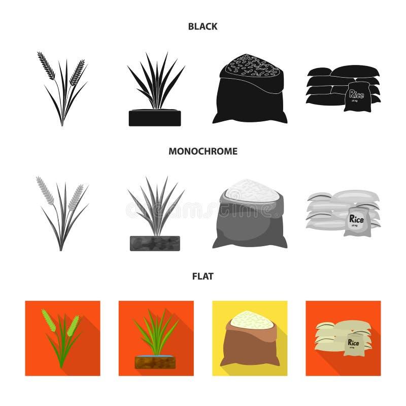 Wektorowy projekt uprawa i ekologiczna ikona Kolekcja uprawa i kulinarna wektorowa ikona dla zapasu ilustracja wektor