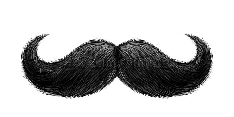 Wektorowy realistyczny czarny wąsy royalty ilustracja