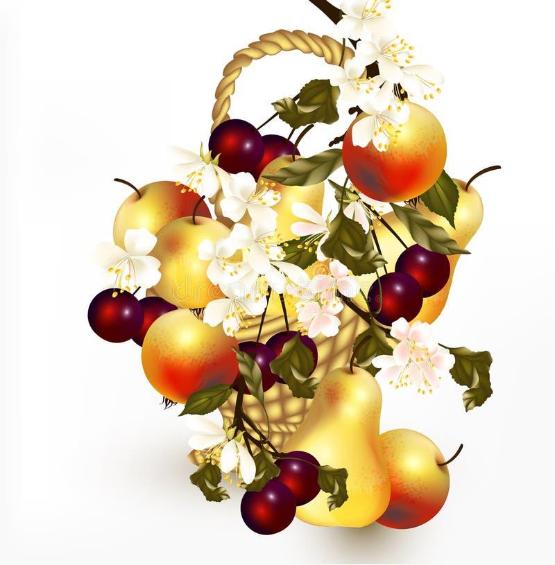 Piękny projekt z realistycznymi wektorowymi owoc w koszu z br ilustracja wektor