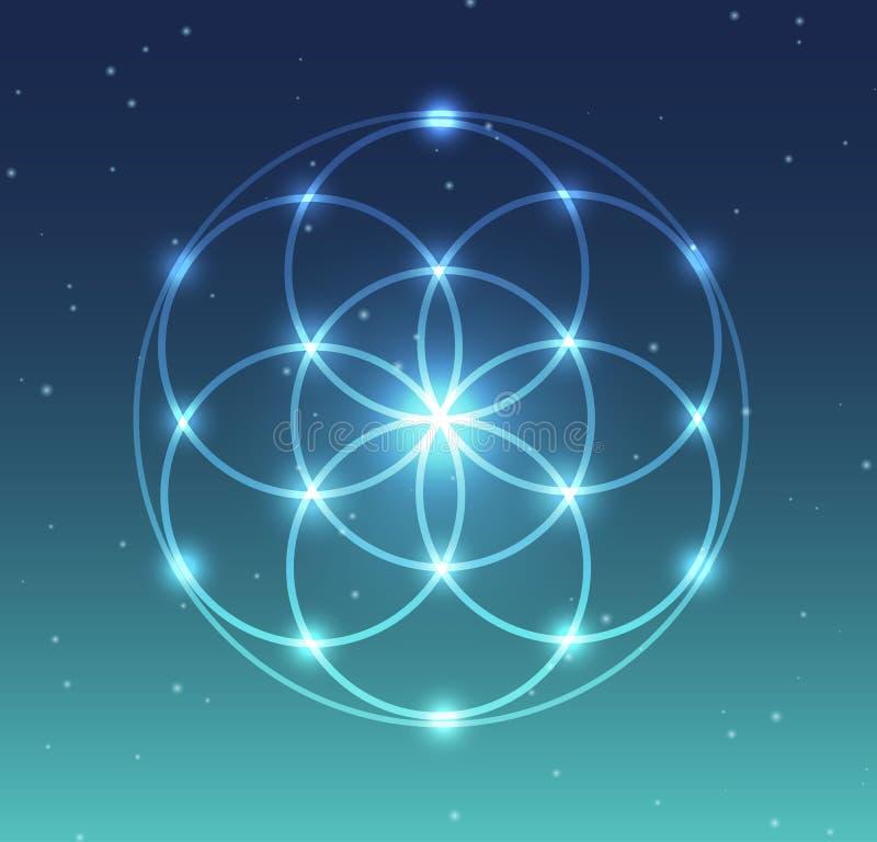 Wektorowy Rozjarzony kwiat życie symbolu ilustracja z Gwiaździstym tłem royalty ilustracja