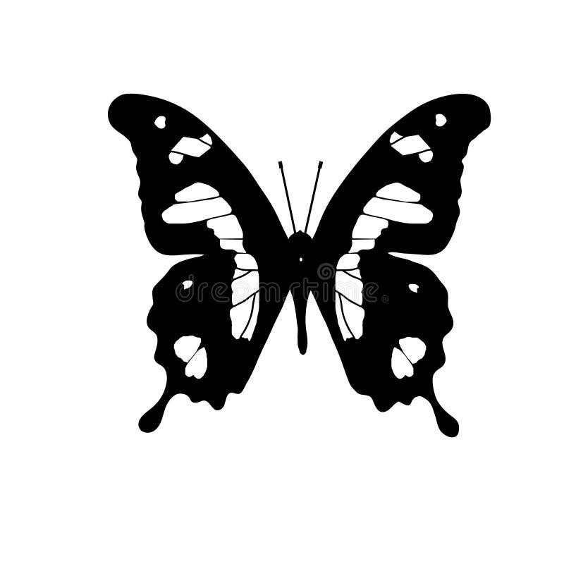 Wektorowy rysunek Afrykański motyli cesarz Swallowtail royalty ilustracja