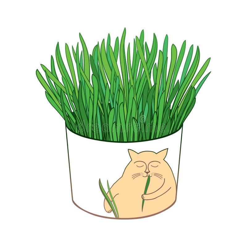 Wektorowy rysunek konturu kota świeża zielona trawa dla kotów i domowych zwierząt domowych w round flowerpot odizolowywającym na  ilustracja wektor