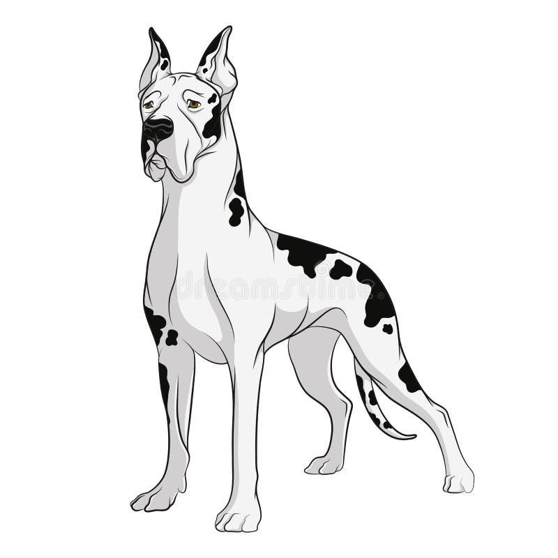 Wektorowy rysunek pies Przedmioty na białym tle ilustracji