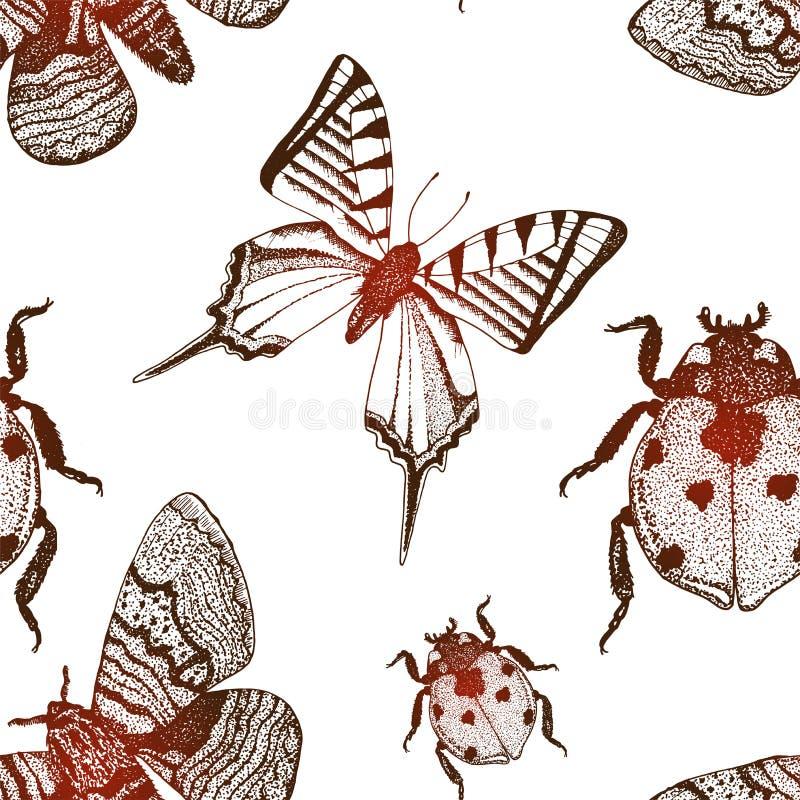 Wektorowy tło z ręki rysować insekt ilustracjami ilustracja wektor