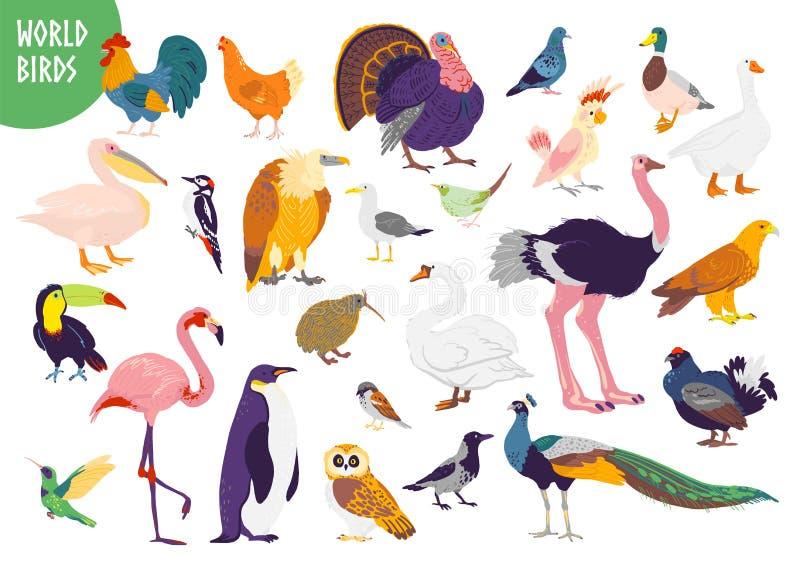 Wektorowy ustawiający płaska ręka rysujący światowi ptaków rodzaje odizolowywający na białym tle ilustracja wektor