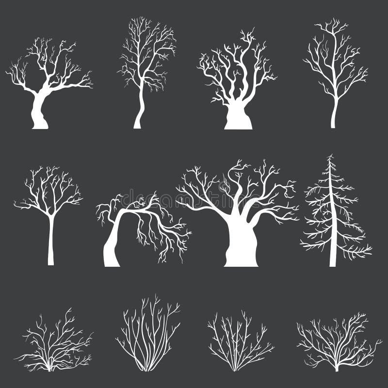 Wektorowy Ustawiający Białe sylwetki Nadzy drzewa i krzaki bez liści ilustracji