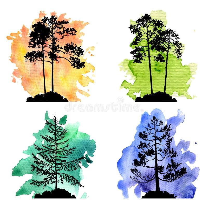 Wektorowy ustawiający conifer drzewa royalty ilustracja