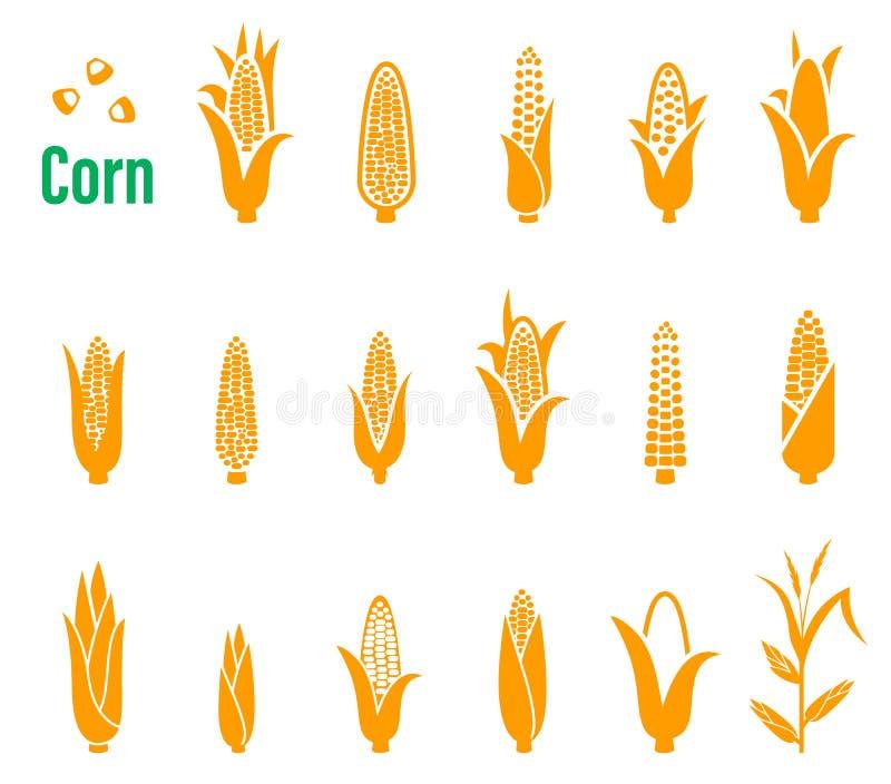 Wektorowy ustawiający ikony i logowie z kukurudzą na białym tle ilustracji