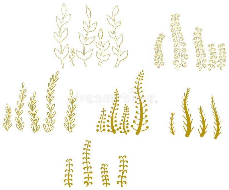 Wektorowy ustawiający jesień kwiaty i trawa royalty ilustracja