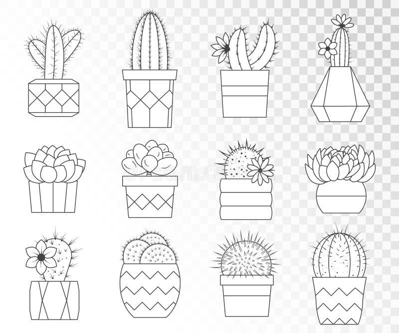 Wektorowy ustawiający kaktusy i sukulenty w kwiatów garnkach royalty ilustracja