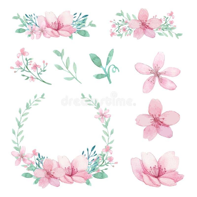 Wektorowy Ustawiający kwiatów, liści i gałąź przygotowania, royalty ilustracja