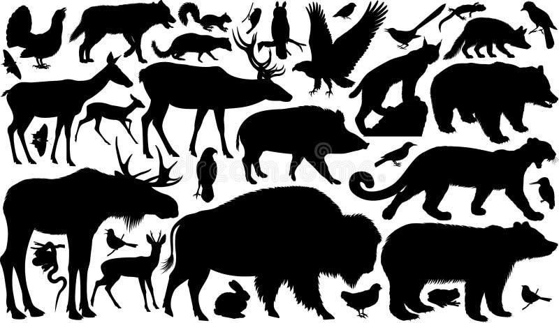 Wektorowy ustawiający lasów zwierząt sylwetki royalty ilustracja