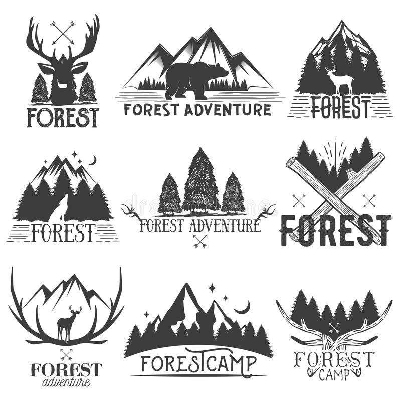 Wektorowy ustawiający lasowi tematów emblematy Rocznik odznaki, logowie, etykietki i majchery z zwierzęciem, drzewo sylwetki odos ilustracja wektor