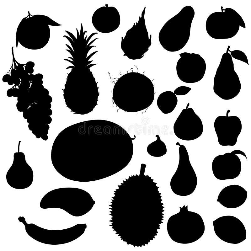 Wektorowy Ustawiający owoc sylwetki ilustracji