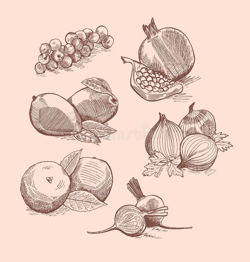 Wektorowy ustawiający owoc, warzywa i jagody, zdjęcia royalty free