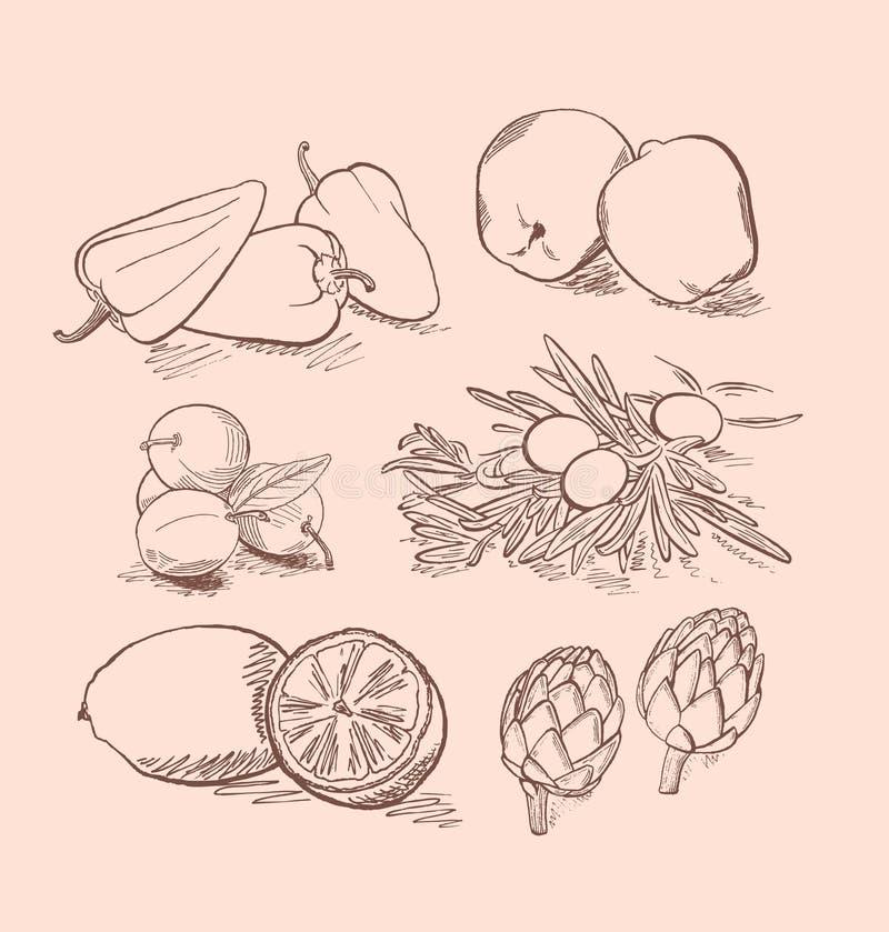 Wektorowy ustawiający owoc, warzywa, jagody i cytrus, fotografia stock