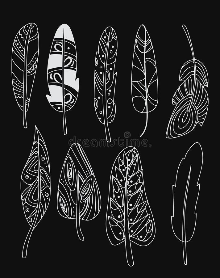 Wektorowy ustawiający stylizowani ptasi piórka Kolekcja piórka dla dekoraci Czarny i biały rysunek ręką liniowa sztuka ilustracji