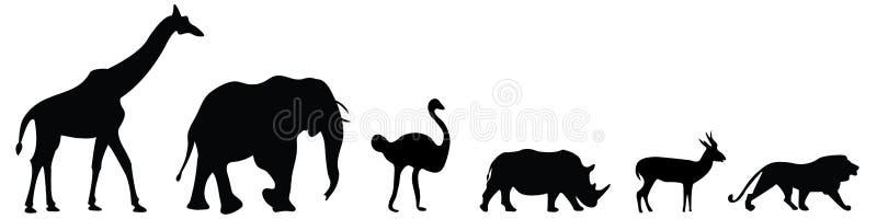 Wektorowy ustawiający sześć afrykańskich safari zwierząt royalty ilustracja